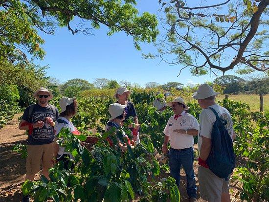 Costa Rica adventure to Tio Leo Coffee Tour in Liberia2