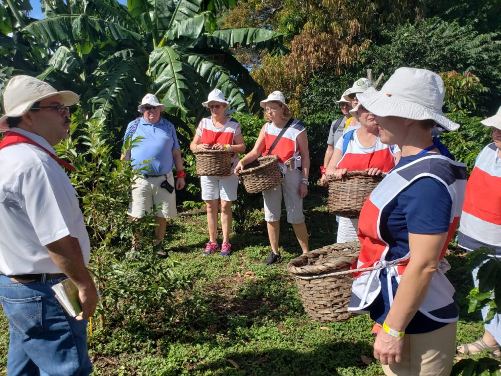 Coffee & Llanos del Cortez Waterfall Tour Costa Rica